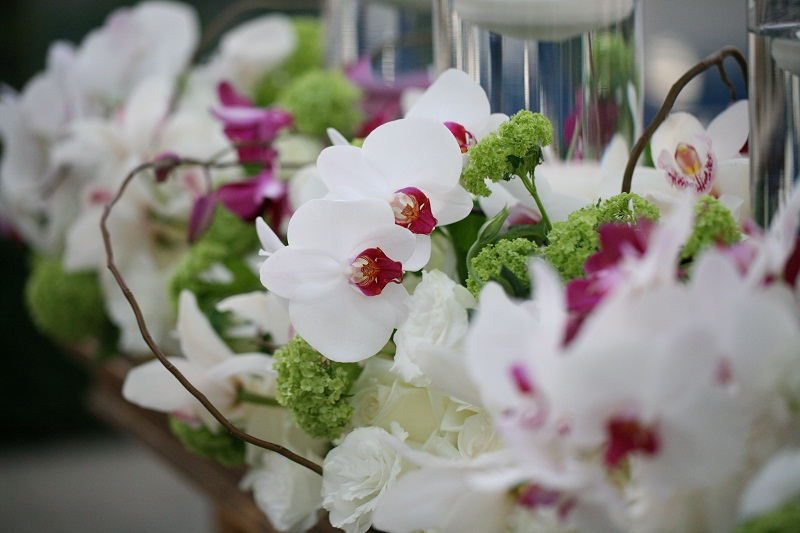 white and purple orchid arrangements for weddings elena damy floral