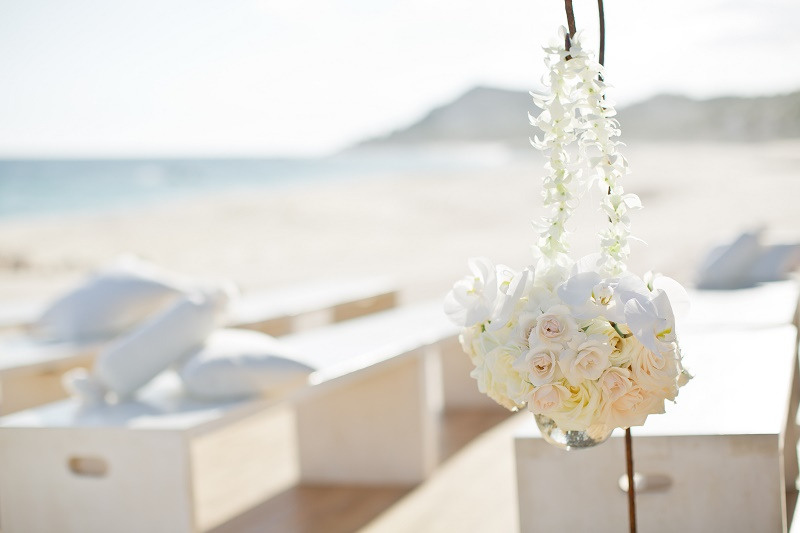 cabo photographers - sara richardson photography-2561