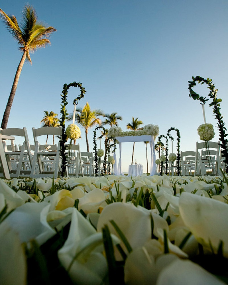 outdoor wedding ceremonies los cabos mexico elena damy floral design