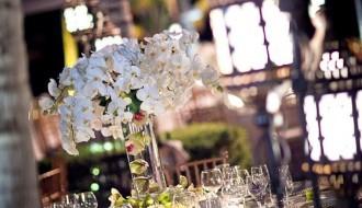 outdoor wedding receptions beach weddings mexico elena damy floral design