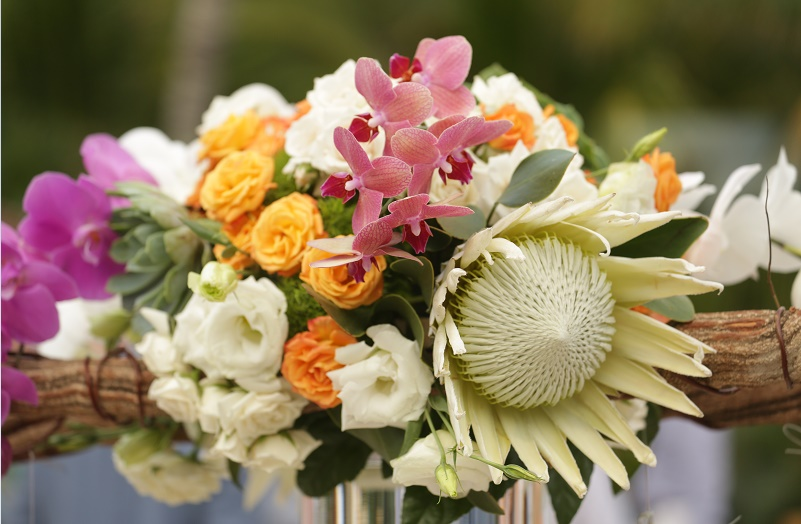 pink orchids magenta orchids white roses protea orange roses mexico wedding flowers elena damy