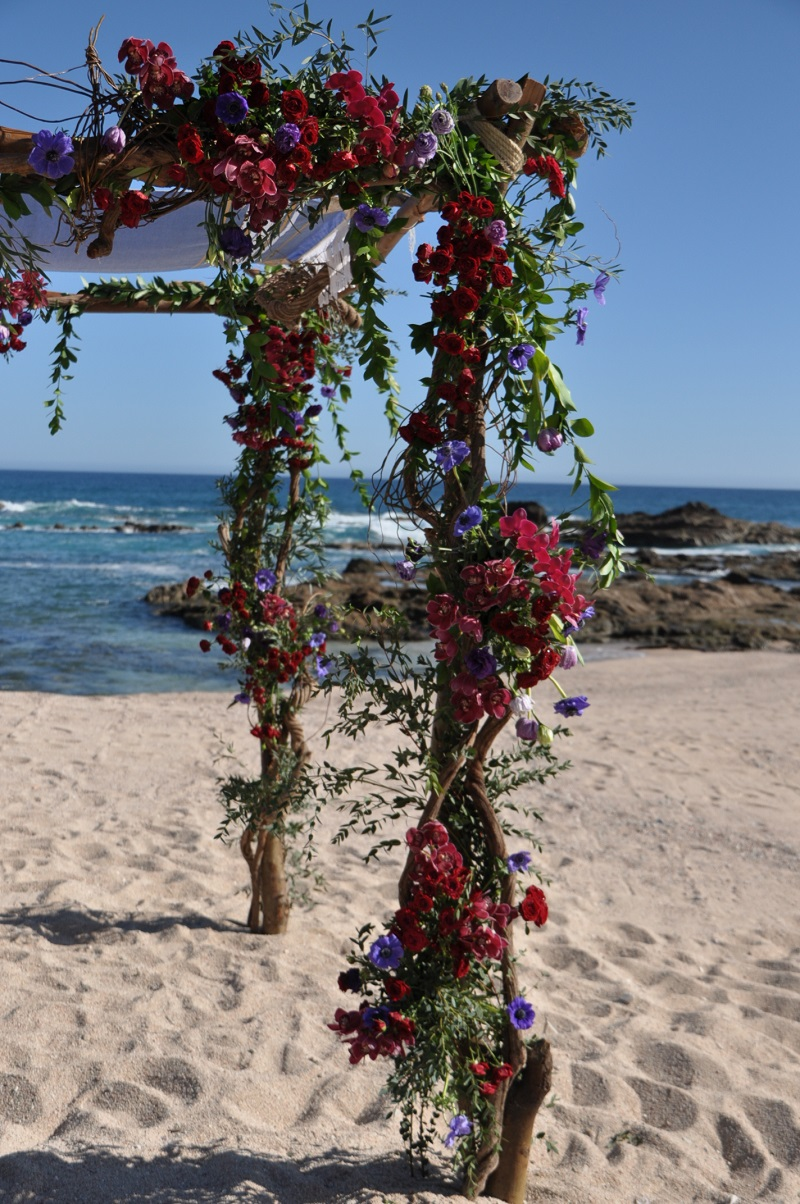 red and purple flowers beach weddings mexico elena damy floral design los cabos 9 ceremony canopy for jewish weddings