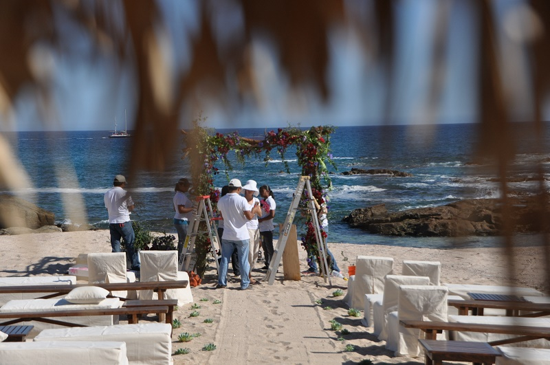red and purple flowers beach weddings mexico elena damy floral design los cabos ceremony chupah