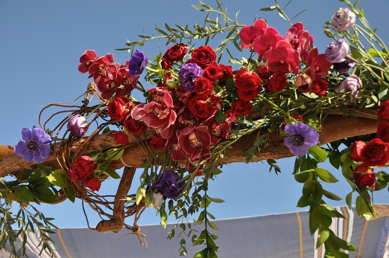 red and purple flowers beach weddings mexico elena damy floral design los cabos jewish wedding canopy for beach