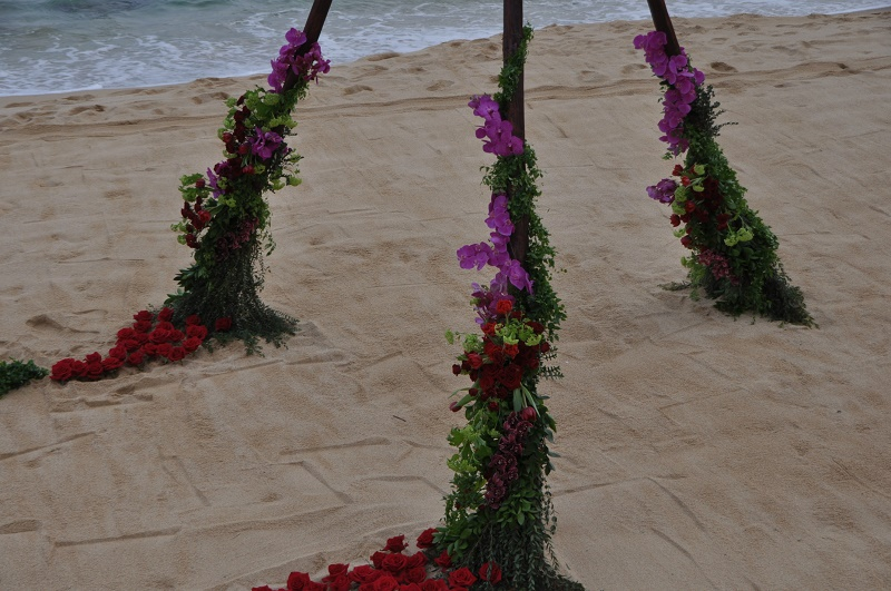 red roses on the beach wedding tee pees destination wedding proposals elena damy