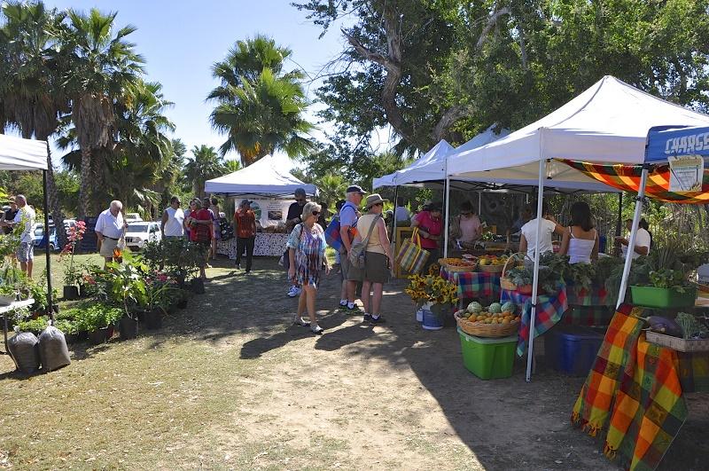 Organico Mercato San Jose del Cabo Wedding Weekend Activities in Los cabos Elena Damy Wedding Planners 3