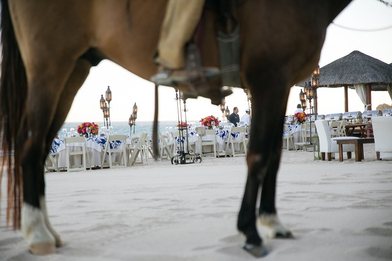 Rehearsal Dinner on the Beach at One and Only Palmilla by Elena Damy Destination Weddings Chris Plus Lynn