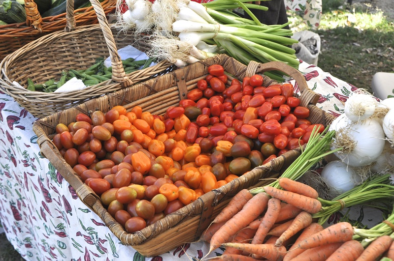 Saturday Mornings at Organic Mercato San Jose Los Cabos Travel with Elena Damy 1