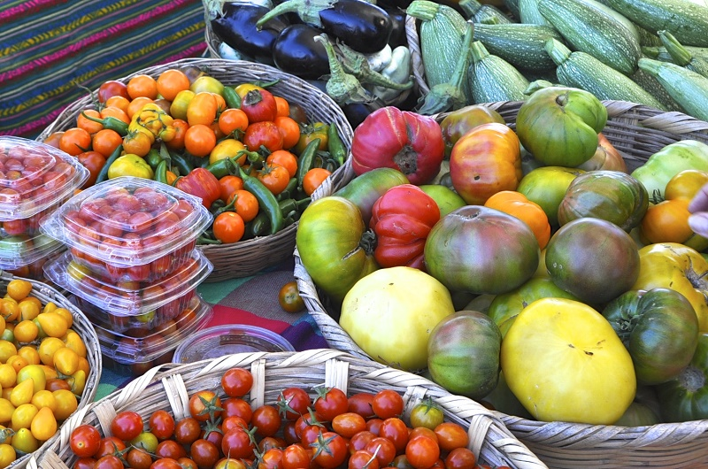 Saturday Mornings at Organic Mercato San Jose Los Cabos Travel with Elena Damy 8
