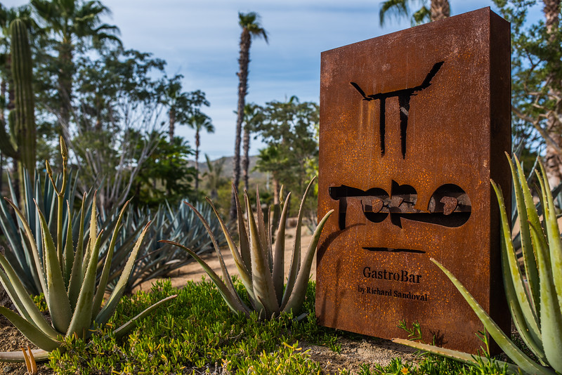 Welcome TORO Latin Kitchen & Bar By Richard Sandoval Elena Day Destination Wedding Planners