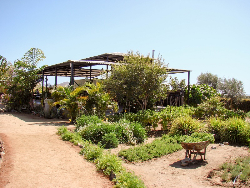 Restaurante Hortaliza Hierbabuena Best Baja Restaurants Elena Damy Destination Weddings 3