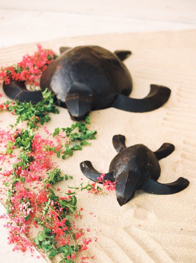sea turtles cabo elena damy destination weddings resort pedregal turtle statues ashley bosnick photo