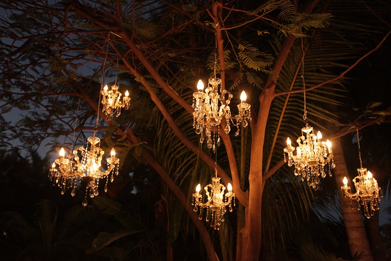 chandeliers in palm trees Cabo Weddings One and Only Palmilla Elena Damy Event Design Cabo Chris Plus Lynn Photo