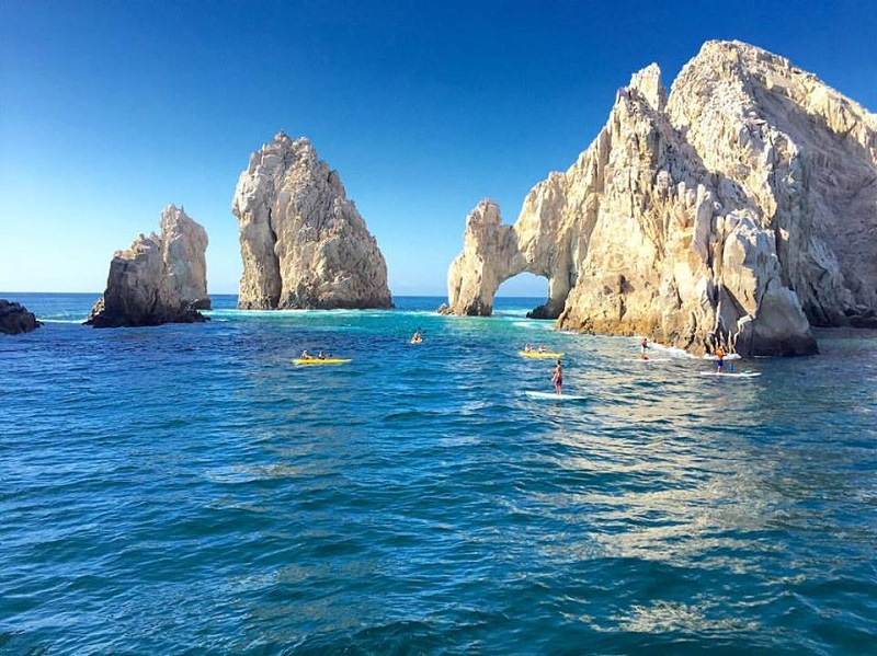 whale watching paddle boarding cabo elsa
