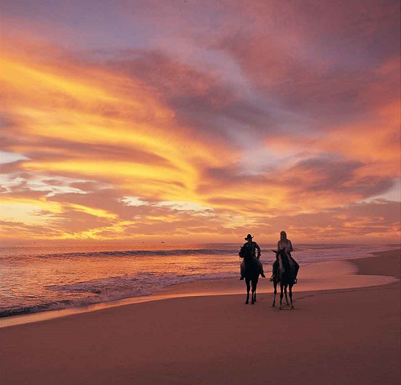 Horseback Riding on the beach cabo how to propose